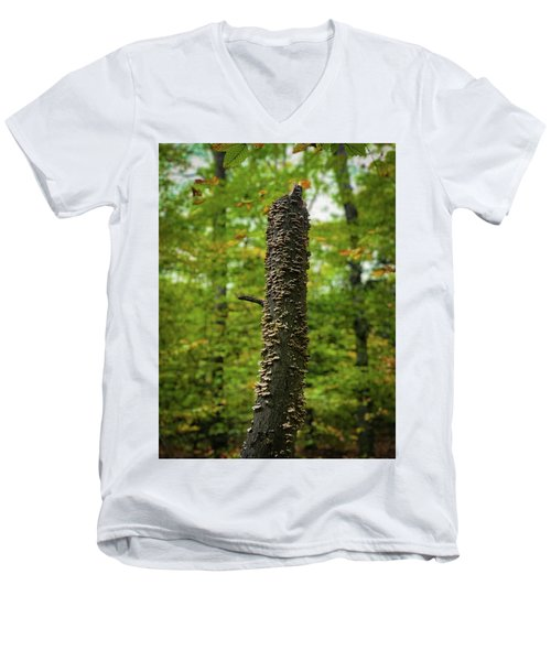 Fungus Among Us Men's V-Neck T-Shirt