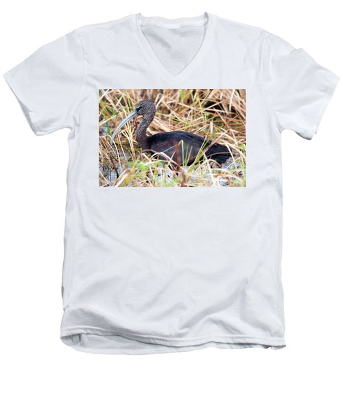 Glossy Ibis 123015 Men's V-Neck T-Shirt