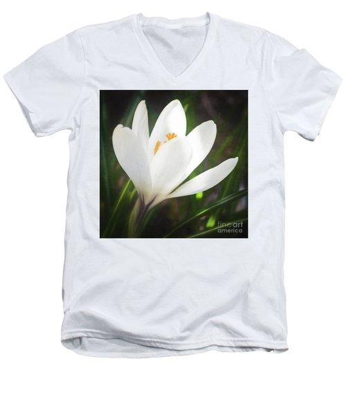 Glowing White Crocus Men's V-Neck T-Shirt