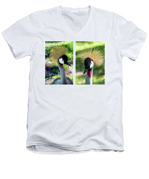 Grey Crowned Crane Gulf Shores Al Collage 3 Diptych Men's V-Neck T-Shirt