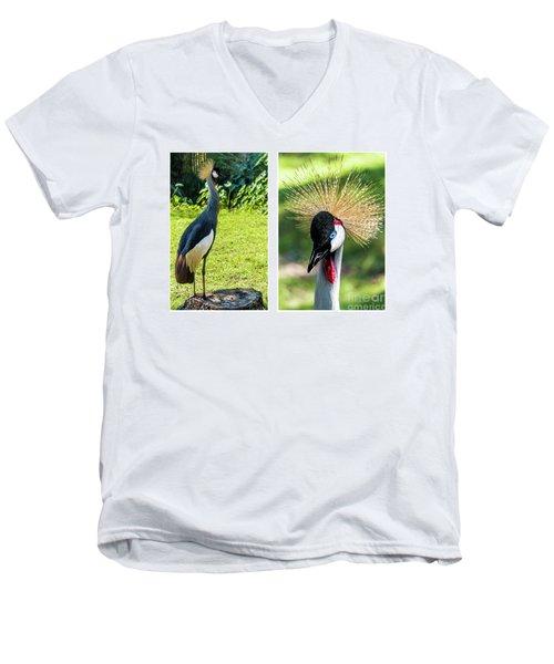 Grey Crowned Crane Gulf Shores Al Collage 8 Diptych Men's V-Neck T-Shirt