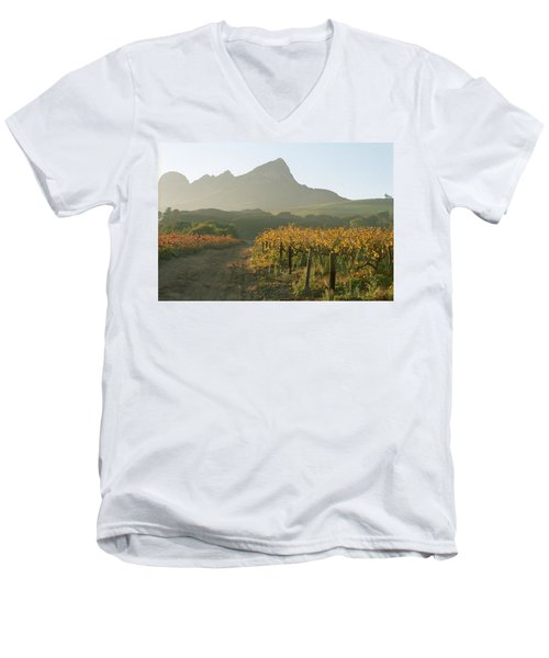 Helderburg Vineyard Men's V-Neck T-Shirt