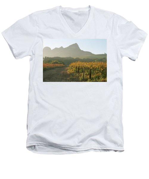 Helderburg Vineyard Men's V-Neck T-Shirt