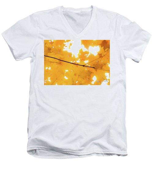 Honey Colored Happiness Men's V-Neck T-Shirt