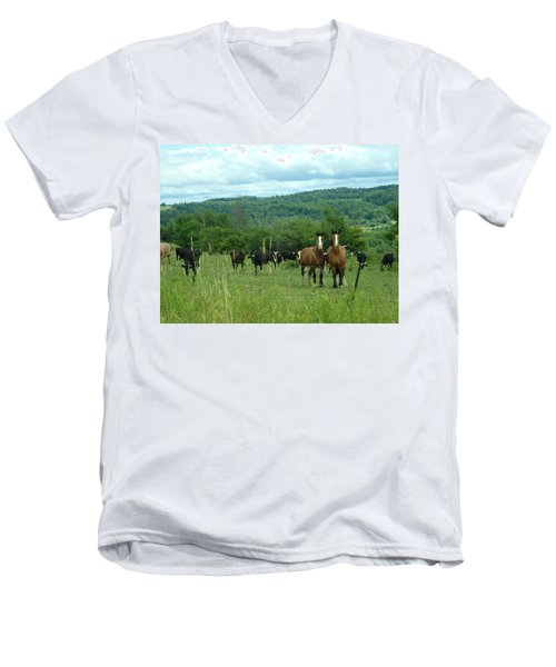 Horse And Cow Men's V-Neck T-Shirt