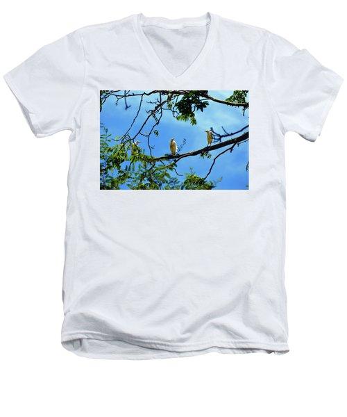 Ibis Perch Men's V-Neck T-Shirt