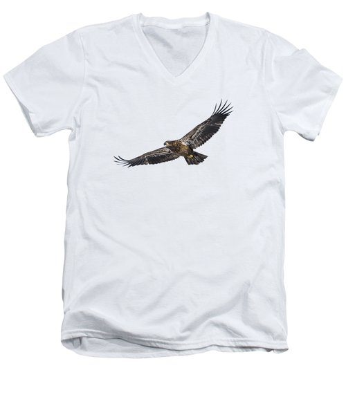 Isolated Bald Eagle 2018-3 Men's V-Neck T-Shirt