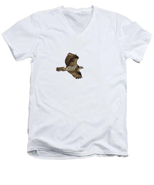Isolated Osprey 2019-1 Men's V-Neck T-Shirt