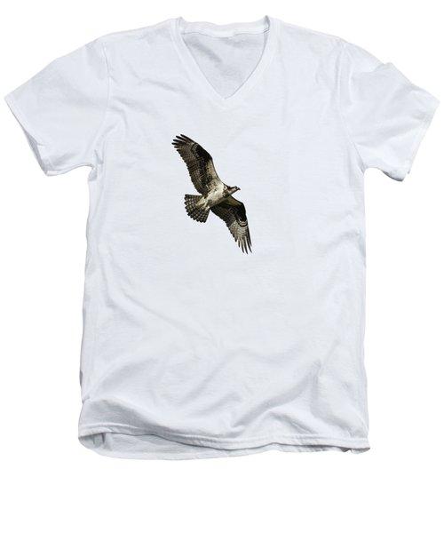 Isolated Osprey 2019-2 Men's V-Neck T-Shirt