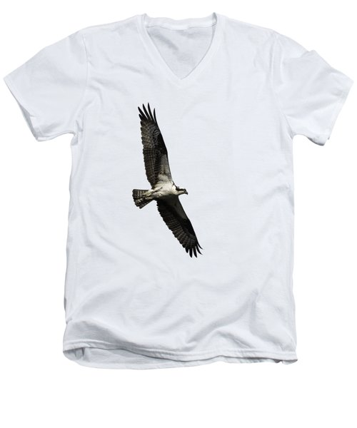 Isolated Osprey 2019-3 Men's V-Neck T-Shirt