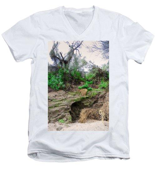 January Day  In The Vekol Wash Men's V-Neck T-Shirt