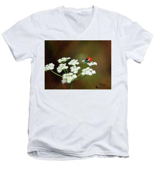 Ladybug In White Men's V-Neck T-Shirt