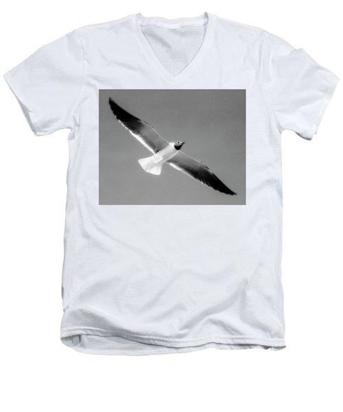 Laughing Seagull Men's V-Neck T-Shirt