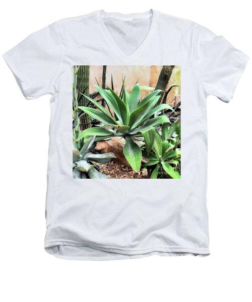 Lion's Tail Agave Men's V-Neck T-Shirt