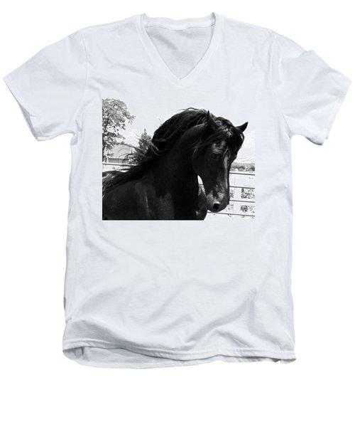 Majestic Beauty  Men's V-Neck T-Shirt