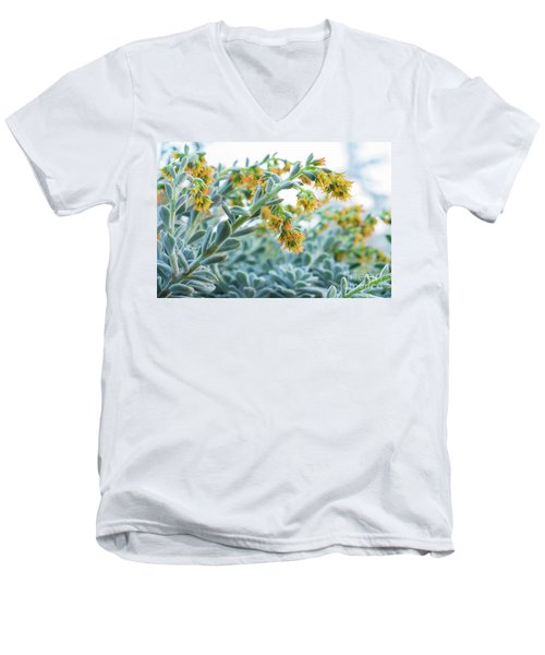 Mexican Echeveria In The  Morning Men's V-Neck T-Shirt