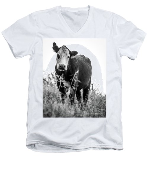 Men's V-Neck T-Shirt featuring the photograph Moo by Vincent Bonafede