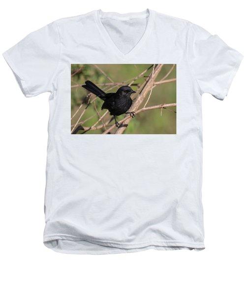 Northern Black Flycatcher Men's V-Neck T-Shirt