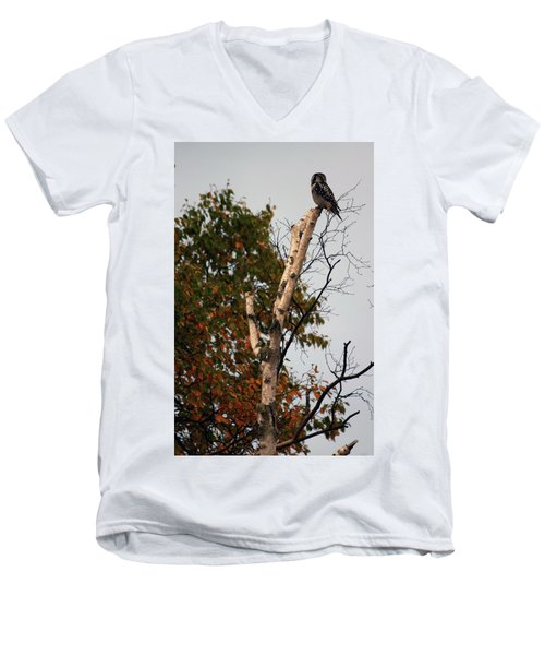 Northern Hawk Owl 101402 Men's V-Neck T-Shirt