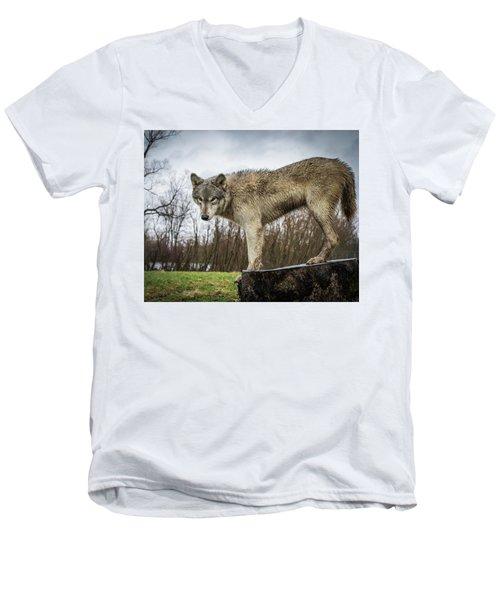 On A Slant Men's V-Neck T-Shirt