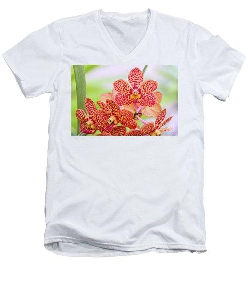 Orange Spotted Orchids Men's V-Neck T-Shirt