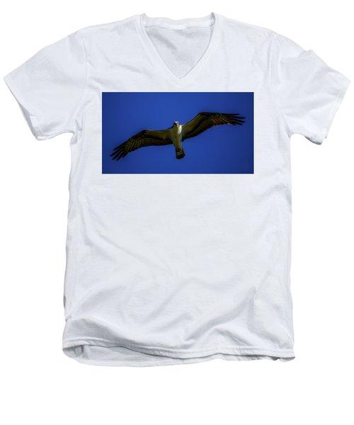 Osprey Glide In Blue Men's V-Neck T-Shirt