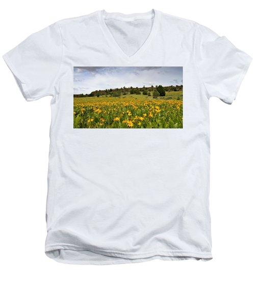 Owyhee Uplands Men's V-Neck T-Shirt
