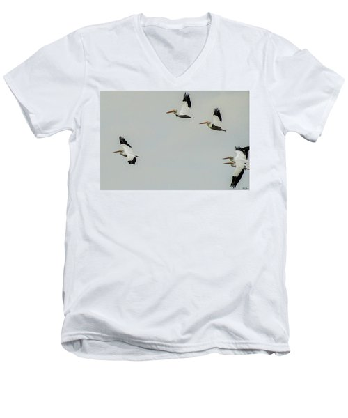 Pelicans In Flight Men's V-Neck T-Shirt
