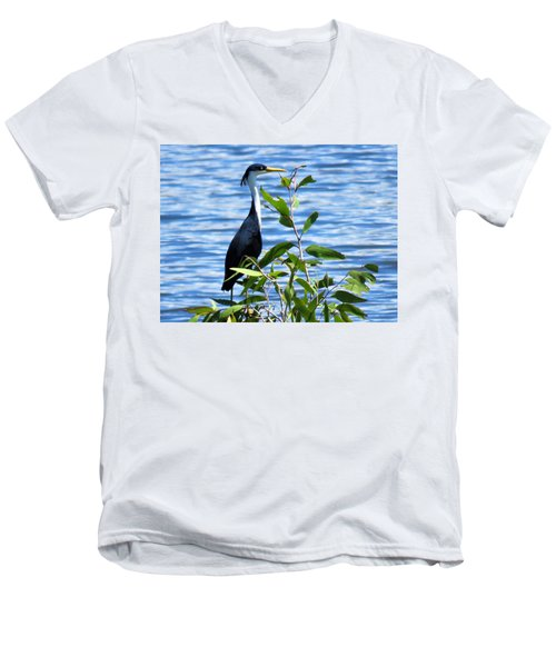 Pied Heron Tree Men's V-Neck T-Shirt