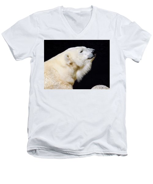 Men's V-Neck T-Shirt featuring the photograph Polar Bear by Dan Miller