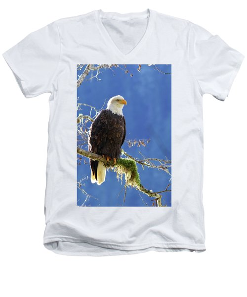 Portrait Of A Backlit Bald Eagle In Squamish Men's V-Neck T-Shirt