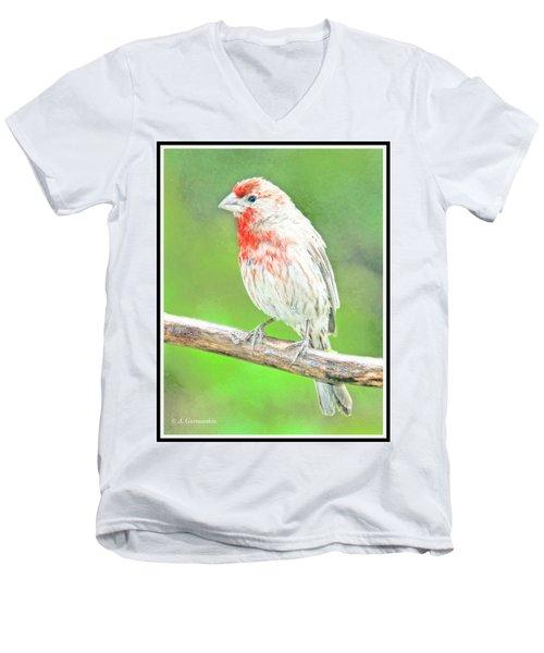 Purple Finch, Animal Portrait Men's V-Neck T-Shirt