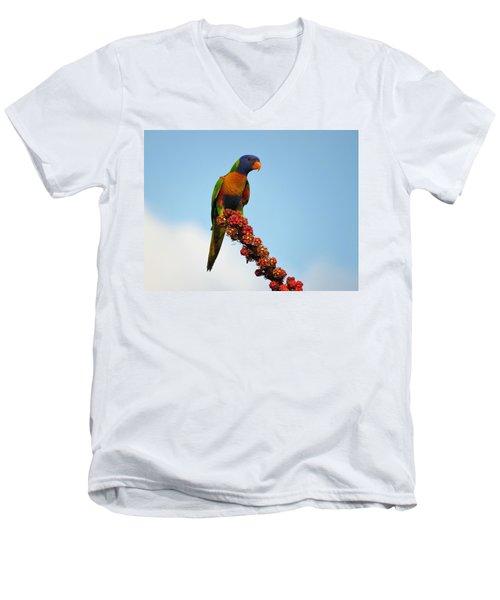 Rainbow Lorikeet Umbrella Tree Flowers Men's V-Neck T-Shirt