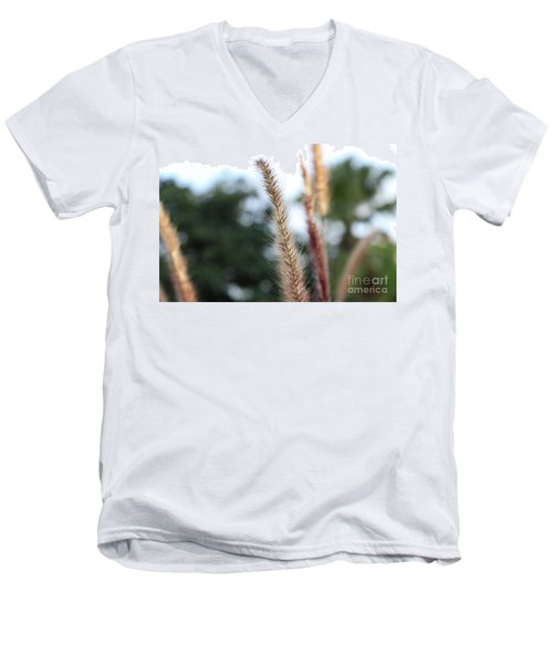 Red Grass - Pennisetum Setaceum 'rubrum' Men's V-Neck T-Shirt