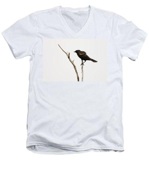 Red Winged Blackbird Men's V-Neck T-Shirt