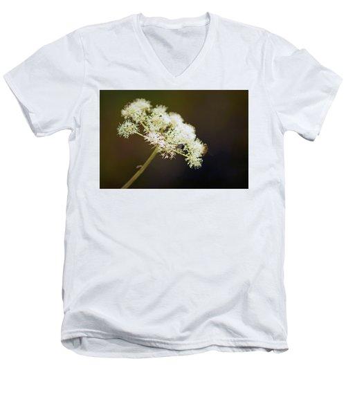 Scotland. Loch Rannoch. White Flowerhead. Men's V-Neck T-Shirt