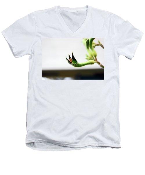 Sheffield. The Botanical Gardens Pavillions Men's V-Neck T-Shirt