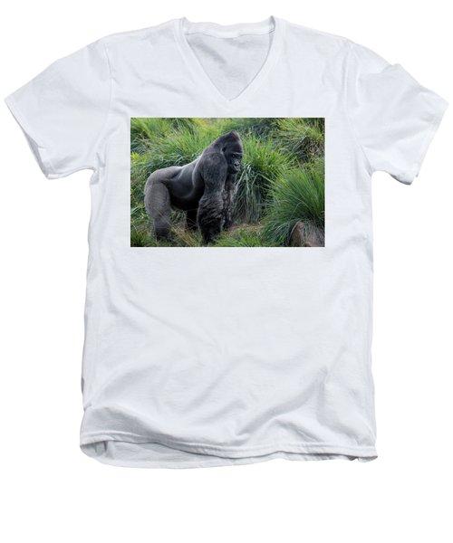 Silverback Stare 1806 Men's V-Neck T-Shirt