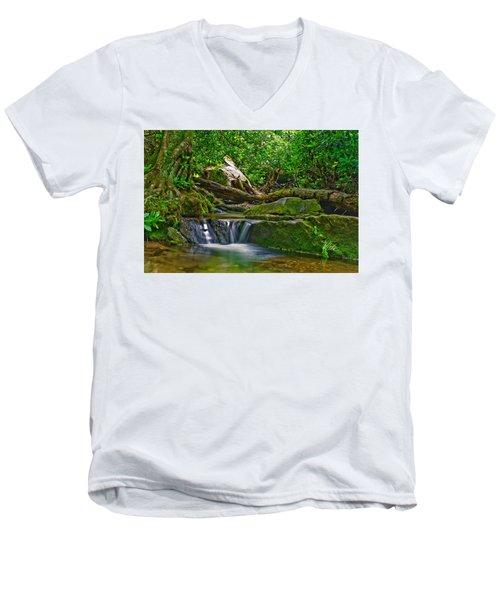 Sims Creek Waterfall Men's V-Neck T-Shirt