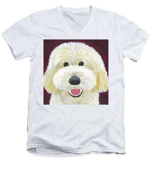 Skyler Men's V-Neck T-Shirt
