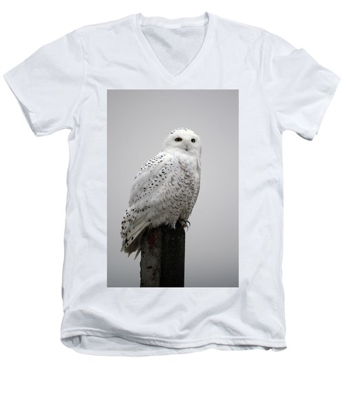 Snowy Owl In Fog Men's V-Neck T-Shirt