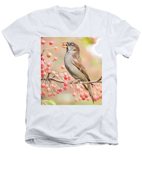 Sparrow Eating Berries Men's V-Neck T-Shirt