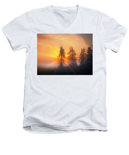 Spruce Trees In The Morning Men's V-Neck T-Shirt