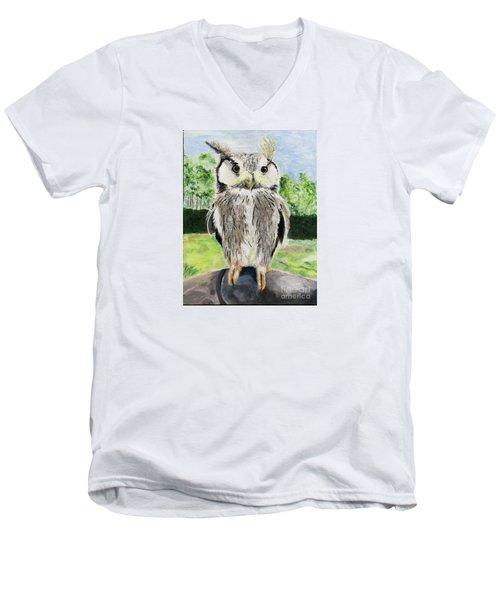 Steve Men's V-Neck T-Shirt