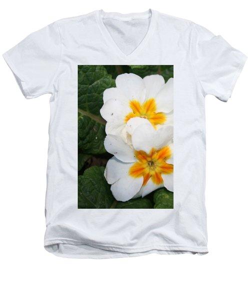 Sweet Primrose Men's V-Neck T-Shirt