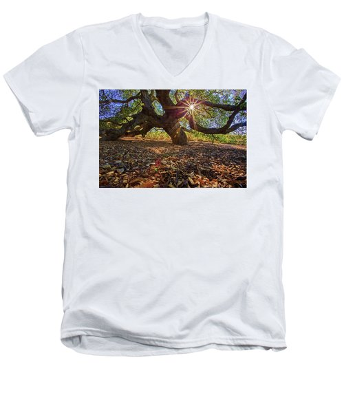 The Old Oak Men's V-Neck T-Shirt