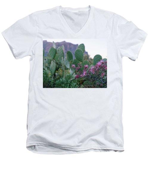 The Vibrant Desert Men's V-Neck T-Shirt