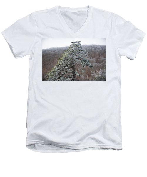 Tree With Hoarfrost Men's V-Neck T-Shirt