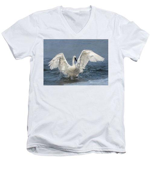Trumpeter Swan Splash Men's V-Neck T-Shirt