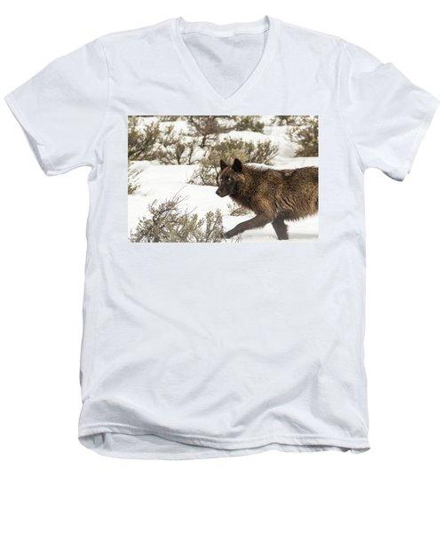 W5 Men's V-Neck T-Shirt